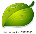 Illustration Of A Leaf And...