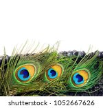 peacock feather. carnival.... | Shutterstock . vector #1052667626