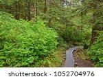 Wrangell  Alaska. Hiking Trail...
