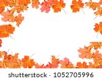 bright colorful autumn leaves... | Shutterstock . vector #1052705996