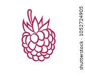 icon raspberry line | Shutterstock .eps vector #1052724905