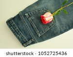 rose decorates jeans  and jeans ... | Shutterstock . vector #1052725436