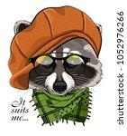 vector raccoon with glasses ... | Shutterstock .eps vector #1052976266