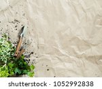 gardening tools with succulents ... | Shutterstock . vector #1052992838