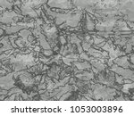 dried flowers background... | Shutterstock . vector #1053003896