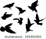 illustration with pigeon... | Shutterstock . vector #105302402