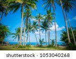Panoramic View Tropical Beach Coconut - Fine Art prints