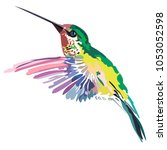 picture of a colored bird... | Shutterstock .eps vector #1053052598