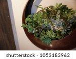 a small glean pot. 11 26 2017 | Shutterstock . vector #1053183962