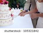 bride and groom at wedding... | Shutterstock . vector #105321842