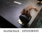 the dirty hair is floor with... | Shutterstock . vector #1053338345