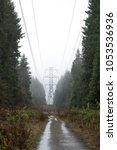 Small photo of View down an unpaved access road, in a rural evergreen forest during a rain storm, with an industrial power transmission tower on the horizon