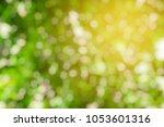 abstract green bokeh background.   Shutterstock . vector #1053601316