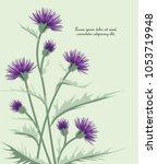 vector illustration thistle... | Shutterstock .eps vector #1053719948