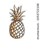 illustration of pineapple... | Shutterstock .eps vector #1053722108