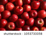 Fresh Ripe Red Apples As...