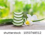 fresh sliced of aloe vera with... | Shutterstock . vector #1053768512