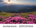 green valley high on the...   Shutterstock . vector #1054134266
