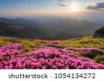 green valley high on the...   Shutterstock . vector #1054134272