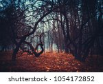 mystical foggy forest with old... | Shutterstock . vector #1054172852