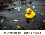 Weathered Rubber Duck In...