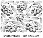 berry fruit  illustration... | Shutterstock .eps vector #1054237625