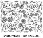 berry fruit  illustration... | Shutterstock . vector #1054237688