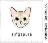 singapura   cat breed... | Shutterstock .eps vector #1054258772