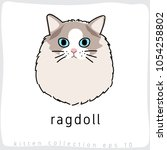 ragdoll   cat breed collection  ... | Shutterstock .eps vector #1054258802
