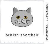 british shorthair   cat breed... | Shutterstock .eps vector #1054258808