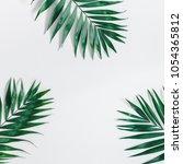 summer tropical composition....   Shutterstock . vector #1054365812