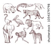 Hand Drawn Illustrations Of...