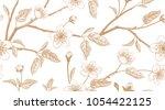 spring  floral vintage seamless ... | Shutterstock .eps vector #1054422125
