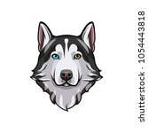 husky dog portrait. husky head. ... | Shutterstock . vector #1054443818