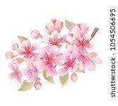 cherry blossoms watercolor.... | Shutterstock . vector #1054506695