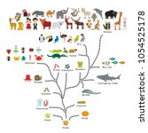 Evolution in biology, scheme evolution of animals isolated on white background. children