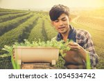 handsome young man planted tree ...   Shutterstock . vector #1054534742