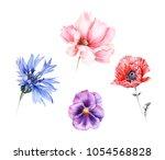 watercolor set of garden... | Shutterstock . vector #1054568828