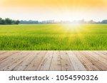 perspective brown wooden board... | Shutterstock . vector #1054590326