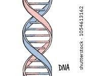 dna symbol. dna helix symbol.... | Shutterstock .eps vector #1054613162