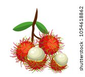 The Bunch Of Rambutans On Whit...