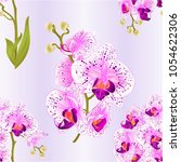 seamless texture branches... | Shutterstock .eps vector #1054622306