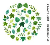 green leaf in circle   vector... | Shutterstock .eps vector #1054629965