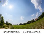 rural landscape with field and... | Shutterstock . vector #1054633916