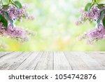 lilac flowers garden blur... | Shutterstock . vector #1054742876