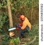 the lumberjack working in a... | Shutterstock . vector #1054850582