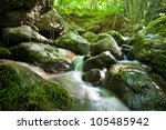 Forest Waterfall And Rocks...