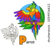 parrot. coloring book page.... | Shutterstock . vector #1054916612