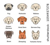 dogs breeds color icons set.... | Shutterstock .eps vector #1054937378