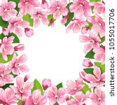cherry blossom background. pink ... | Shutterstock .eps vector #1055017706